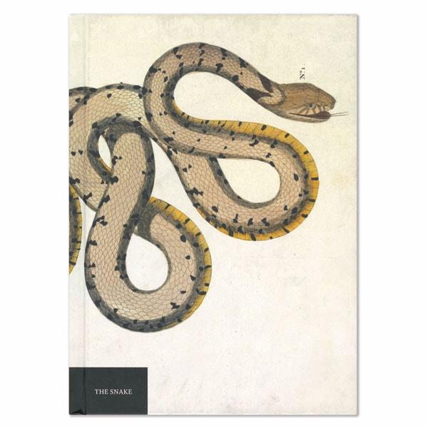 The Snake Notebook