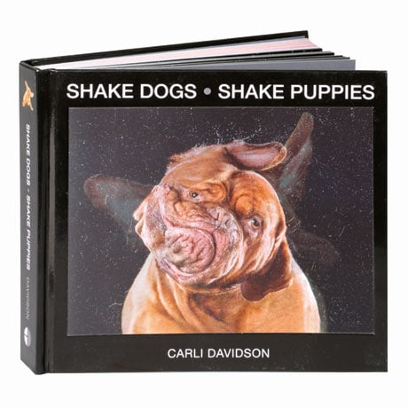 Shake Dogs & Shake Puppies