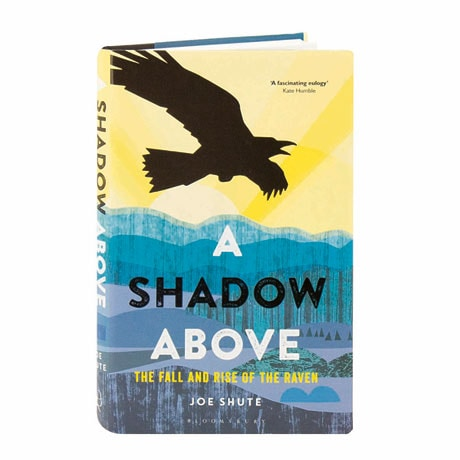 A Shadow Above