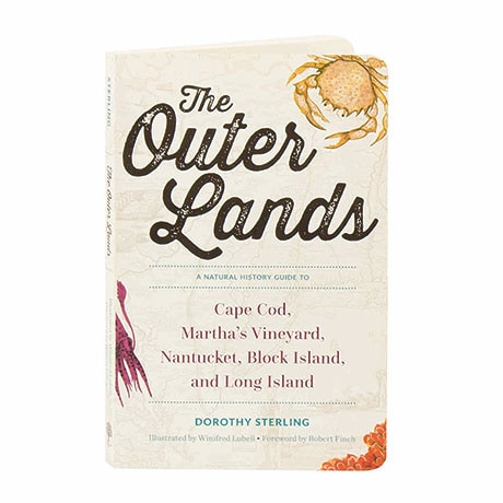 The Outer Lands