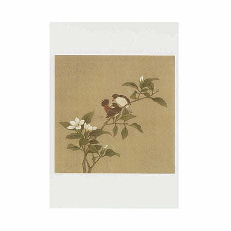 Birds And Flowers Boxed Small Notecards