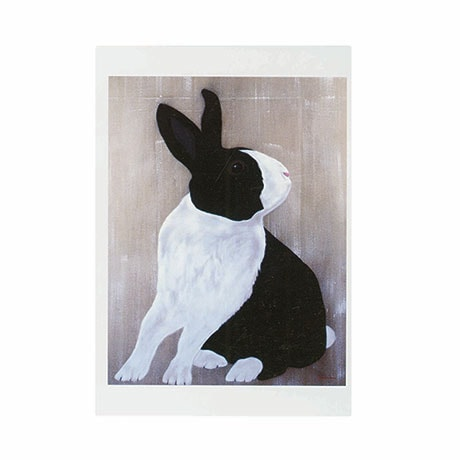 Thierry Bisch: Lapin Pie Boxed Small Notecards