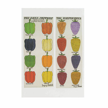 Gregory L. Blackstock Boxed Notecards