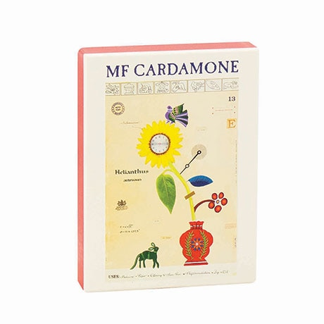 Mf Cardamone Boxed Notecards