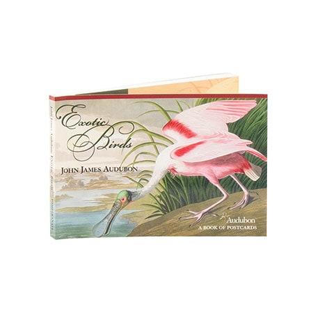 John James Audubon: Exotic Birds Book Of Postcards