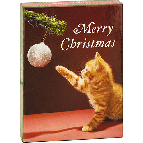 Merry Christmas Kitty Boxed Holiday Notecards
