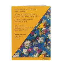 Fauve Birds Butterflies And Flowers Giftwrap