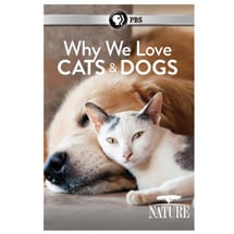 Nature—Why We Love Cats and Dogs