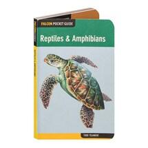 Reptiles & Amphibians