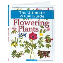 The Ultimate Visual Guide—Flowering Plants