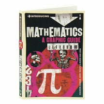 Introducing Mathematics A Graphic Guide