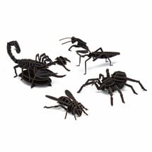Insect 3D Paper Puzzles